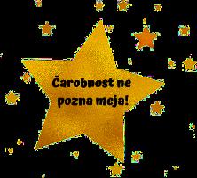 Urška Vidic Logo
